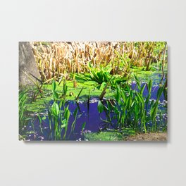 aquatic plants Metal Print