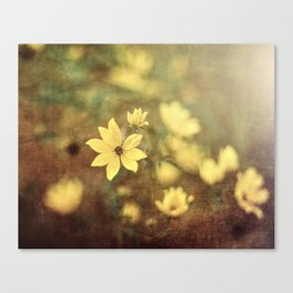 Fairy Tale Meadow Canvas Print