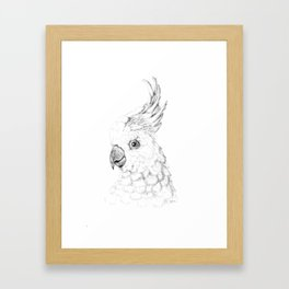 Sulphur Crested Cockatoo - Black and White Portrait Framed Art Print