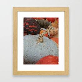 sublime squash Framed Art Print