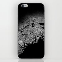 hare iPhone & iPod Skins featuring Hare by hardy mayes