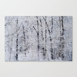 Cottonwood Frost Canvas Print