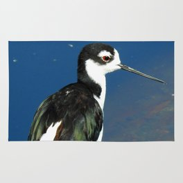 Juvenile Black Necked Stilt Rug