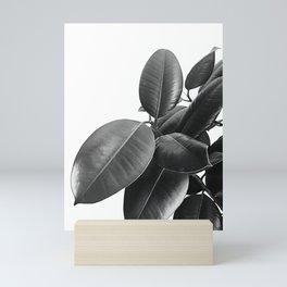 Ficus Elastica #23 #BlackAndWhite #foliage #decor #art #society6 Mini Art Print