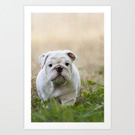 Walking Wrinkles Art Print