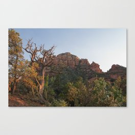 Golden Hour Sedona Canvas Print