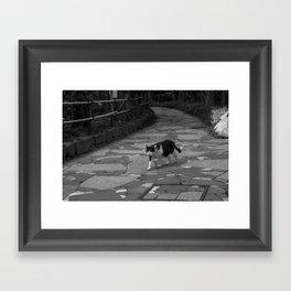 patrol Framed Art Print