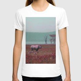Black Rhino in Pink T-shirt