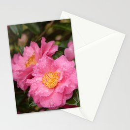 Beautiful camellia Stationery Cards