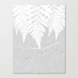 Fern fringe - concrete Canvas Print