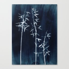 Indigo Hosta Botanical Cyanotype Canvas Print