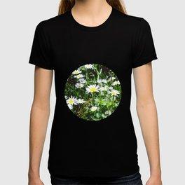 Oh Daisys T-shirt
