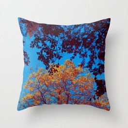 Red and Golden Spring Crowns Throw Pillow