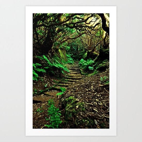 Forest Secrets Art Print