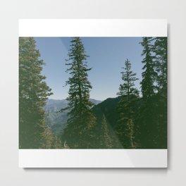 Mt. Timpanogos Wilderness Metal Print