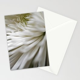 Spider Mum Stationery Cards