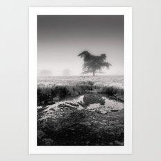 Tree in Marshland - Black and White Collection Art Print