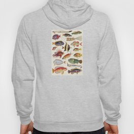 Varieties of Fish Hoody
