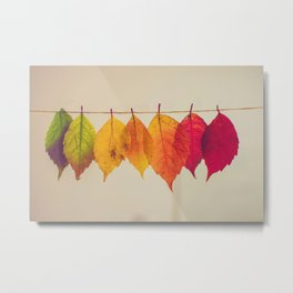 Rainbow Leafs (Color) Metal Print