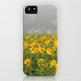 Sunflower Farm and Mist iPhone Case