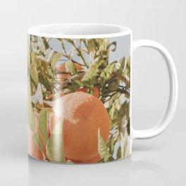 Orange Citrus Fruit Tree Blue Sky Coffee Mug