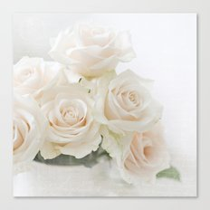 blush roses Canvas Print