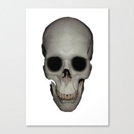 Human Skull Vector Isolated Canvas Print