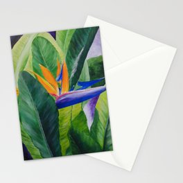 Bird of Paradise Painting by Teresa Thompson Stationery Cards