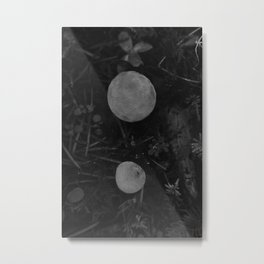 Young Puffball Mushrooms in Black and White Metal Print