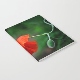 Red Punch Notebook
