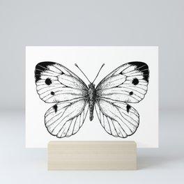 Cabbage butterfly Mini Art Print