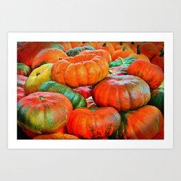 Heirloom Pumpkins Art Print