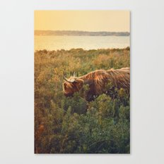 Beast of the southern wild Canvas Print