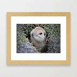 Hi....It's Me! Framed Art Print