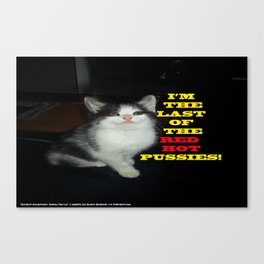 Sophia The Cat #1 [Tex's Owner] Canvas Print
