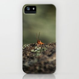 The Cliffhanger iPhone Case