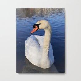 Swan Greeting Metal Print