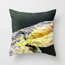 Watercolor Snake, Water Moccasin 01, Merchants Millpond, North Carolina Throw Pillow