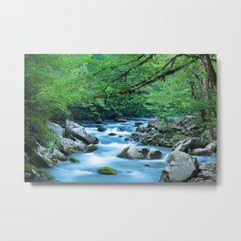 Mountain Stream 1 Metal Print