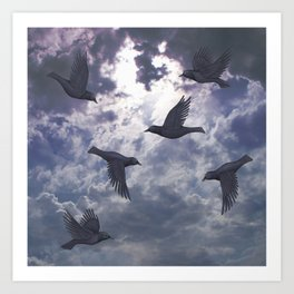 crows in the stormy sky Art Print