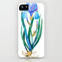 Light Blue Iris iPhone Case