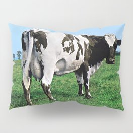 Atom Heart Mother Pillow Sham