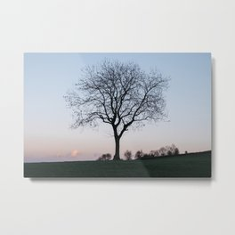 Tree on a hilltop above Matlock silhouetted at twilight. Derbyshire, UK. Metal Print