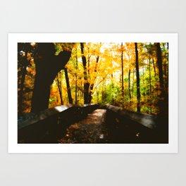 A Path to the Falls  Art Print