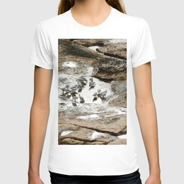 Sandpipers feeding in a tide pool T-shirt