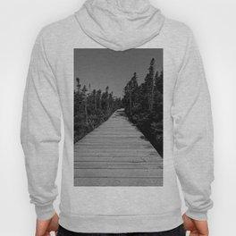 walkway through the trees Hoody