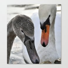 Mother and son 2 Canvas Print