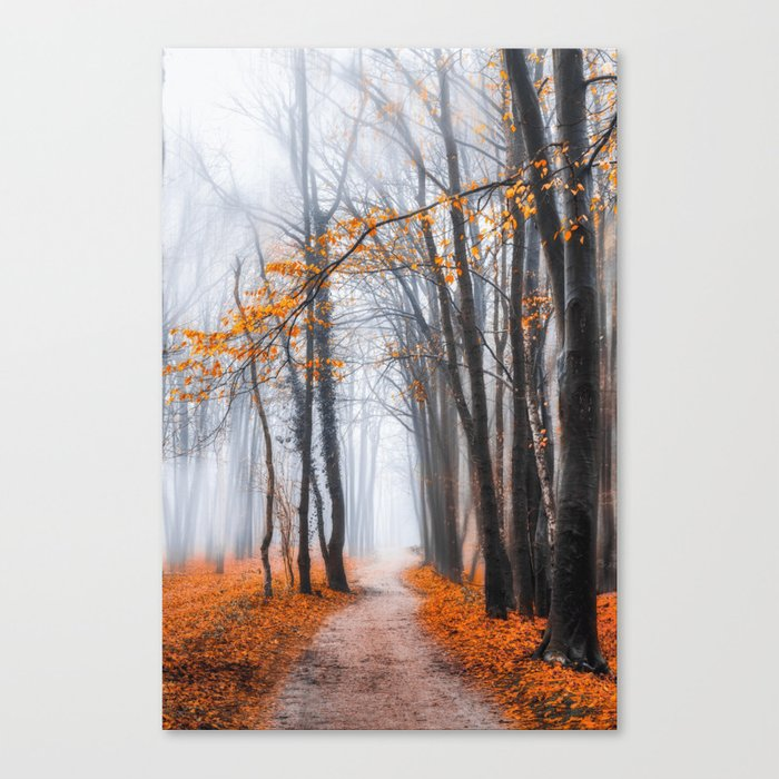 Misty road Canvas Print