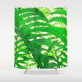 249 - Ferns Shower Curtain