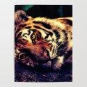 lying tiger by aidaart